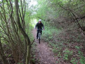 Mountainbike17_2_2