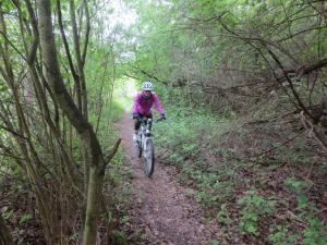 Mountainbike17_2_4