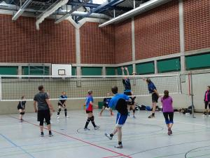 "Volleyballturnier 2018 ""33"""