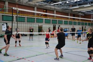 """Volleyballturnier 2019 """"16"""""""