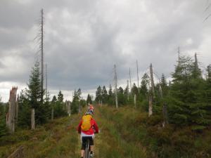 """Mountainbike 2019/Wochenende """"90"""""""
