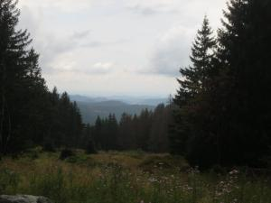"""Mountainbike 2019/Wochenende """"95"""""""
