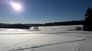 Wintersporttag17_2