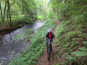 Mountainbike17_2_8