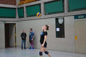 "Volleyballturnier 2019 ""25"""