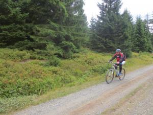 """Mountainbike 2019/Wochenende """"76"""""""