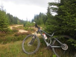 """Mountainbike 2019/Wochenende """"78"""""""