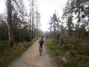 """Mountainbike 2019/Wochenende """"80"""""""