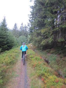 """Mountainbike 2019/Wochenende """"87"""""""