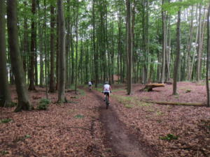 Mountainbike20_1_14
