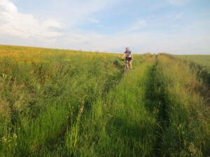Mountainbike20_1_27