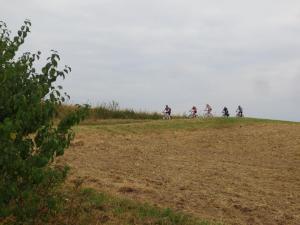 "Mountainbike 2018/3 ""1"""