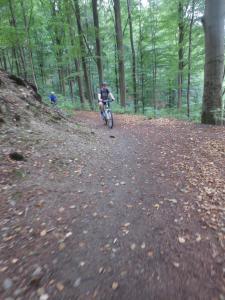 "Mountainbike 2018/3 ""23"""
