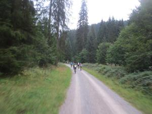 "Mountainbike 2018/4 ""31"""